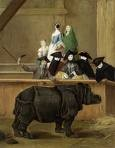 Il rinoceronte.jpg