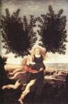 dalle Metamorfosi di Ovidio.jpg
