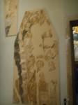 Palazzo_ducale,_affreschi_di_guariento_07.jpg