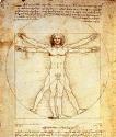 L'uomo di Vitruvio.jpg