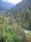 boschi del Cadore.jpg