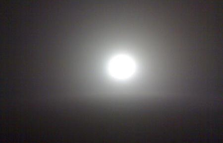 Fantasmi e nebbia a Venezia