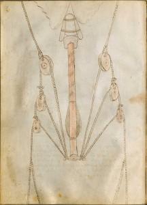 bellicorum 2